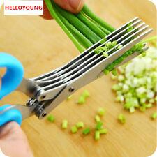 Acier Inox 5 Lames Ciseaux Herb Cleaner Accueil Cuisine Outil Envoi Aléatoire