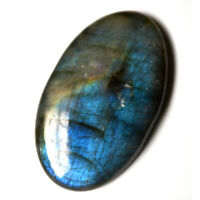 Cts. 37.50 Natural Full Blue Fire Labradorite Cabochon Oval Cab Loose Gemstone