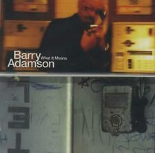BARRY ADAMSON ~ What It Means ~ Original 1997 UK Mute Records PROMO 1-track CD