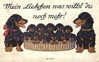Dogs, Lot of Dachshund Puppies in a Basket with Their Parents,Funny Old Postcard