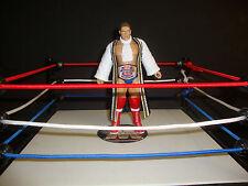 WWE LORD STEVEN REGAL CUSTOM FIGURE  jakks classic legend WCW wwf