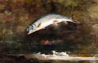 Jumping Trout  by Winslow Homer  Paper Print Repro