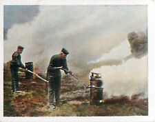 Soldiers smoke Artificial Fog France Deutsches Heer WWI WELTKRIEG 1918 CHROMO