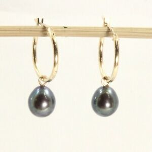 14k Yellow Solid Gold Hoop; Raindrop Shaped Black Cultured Pearl Earrings TPJ