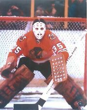 TONY ESPOSITO 8X10 PHOTO HOCKEY CHICAGO BLACKHAWKS NHL PICTURE