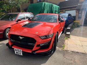 Ford Mustang Ecoboost Custom