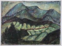 Hugo Knobloch 1928 Rostock Altvatergebirge Alta Gesenke República Checa Polonia