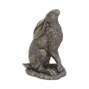 Beautiful Bronzed Hare - MOONLIGHT Country Side Nature Star Gazing Farm VP003