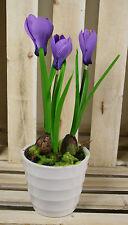 Artificiale CROCUS vasi piante, molla seta fiori per casa e ufficio