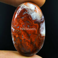 Cts. 33.05 Natural Laguna Lace Agate Cabochon Oval Cab Exclusive Loose Gemstone