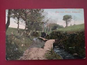 POSTCARD ANGLESEY - GLAN LLYN BROOK, LLANGOED - EARLY 1900's.