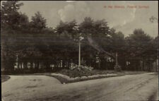 Poland Springs ME In the Groves c1910 Postcard