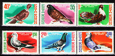 Romania 1981 Sc3002-07 Mi3777-82 6v   mnh  Various carrier pigeons and doves