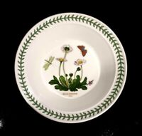 Beautiful Portmeirion Botanic Garden Daisy Rimmed Soup Bowl