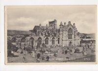 Melrose Abbey From SW 1953 Postcard 384a
