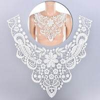 1X Embroidered Floral Lace Neckline NeckCollar Trim Clothes Sewing Patch L50  №[