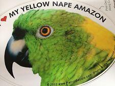 Yellow Nape Amazon Parrot Exotic Bird Vinyl Decal Bumper Sticker