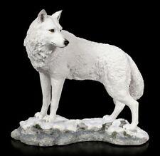 Polarwolf Figur in Habachtstellung - Veronese weißer Wolf Hund Deko Statue