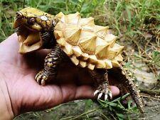 Albino Alligator Snapping Turtle Tortoise Resin Model Figurine 19cm