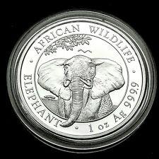 Somalia Elefant 2021 Silber Münze 1 Unze OZ Silver African Wildlife Elephant