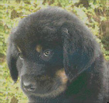 """Black Puppy Complete Counted Cross Stitch Kit 10""""x 9.5"""""""