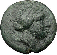 CYME KYME Asia Minor 300BC Ancient Greek Coin Horse Amazon warrior  i31480