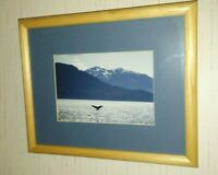 Humpback Whale Tail Glacier Bay Alaska Ocean Wildlife Animal Framed Photo 8x10