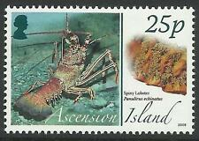 ASCENSION 2008 ANIMALS EGGS SPINY LOBSTER 1v MNH