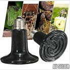 50-200W Black Ceramic Infrared Light Heat Emitter Lamp Reptile Brooder Incubator