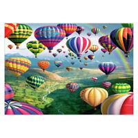 5D Diamond Painting Ballon Diamant DIY Kreuzstich Stickerei Bilder Stickpackung
