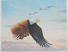 """US Air Force BALD EAGLE JET PILOT fighter 17x23"""" lithograph airplane usa america"""