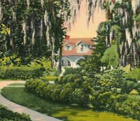 Brookgreen Gardens Historic Place Landmark Rice Plantation SC Vintage Postcard