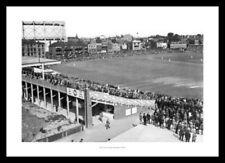 Surrey Cricket Cricket Memorabilia