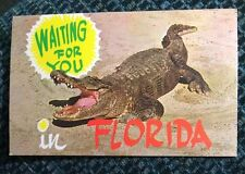 Alligator Waiting For You In Florida FL Postcard Old Vintage 1971 Gator Sand