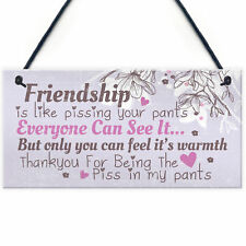 Friendship Sign Funny Birthday Keepsake Gift Hanging Wall Plaque Thank You Gift