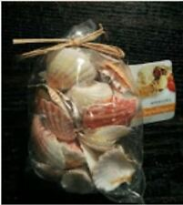 Assorted sea shells - Philippines 1bag - 8.8oz in plastic see through bag an341