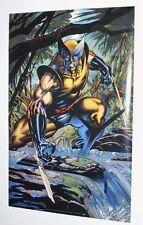 Rare 1995 original 34x22 Marvel Comics X-Men Wolverine poster 184: 1990's/Logan