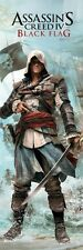 ASSASSIN'S CREED IV ~ EDWARD BADASS DOOR 21x62 Video Game POSTER Black Flag 4