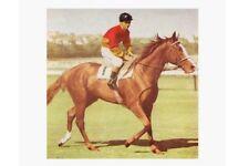 PERSIAN LYRIC 1960s Champion Sydney & Brisbane modern Digital Photo Postcard