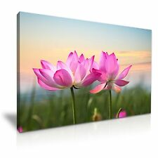 """Grande Hermosa Flor De Loto LONA pared arte Foto impresión 76x50cm o 30""""x20"""""""