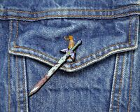 Zelda Breath of the Wild Collector Pin - Master Sword - Switch Wii 3DS Snes Nes