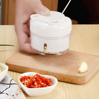 Garlic Press Ginger Grinding Vegetable Cutter Onion Mincer Kitchen With handUS