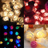 20LED roses fairy wedding garden party Christmas decorations string light 2.5M