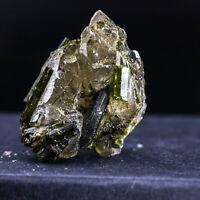 K19 NATURAL Tourmaline Skeletal Crystal Clear Quartz Cluster Specimen RAW Gem