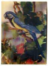 Russian Armenia USSR Vintage Lenticular 3D Stereo Postcard Parrot Bird 1989