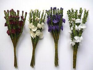 4 colours Heather Flower Spray 12 Stems- Wedding Favours Craft Cake Decoration