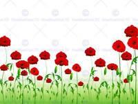 PAINTING ILLUSTRATION POPPY FIELD FLOWERS RED ART PRINT POSTER MP3164B