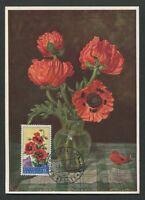 SAN MARINO MK 1957 FLORA KLATSCHMOHN MAXIMUMKARTE CARTE MAXIMUM CARD MC CM d8076