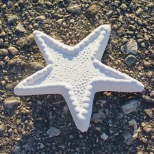 """Flat Starfish Decorative 4"""" In Stock Ceramic Bisque Ready To Paint Pottery"""