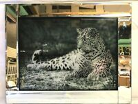 Leopard Mirrored Framed Silver Glitter Picture Wall Hanging Photo Print Hologram
